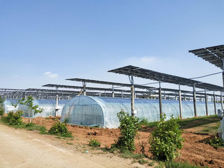 北控新泰100MW农光互补领跑者项目